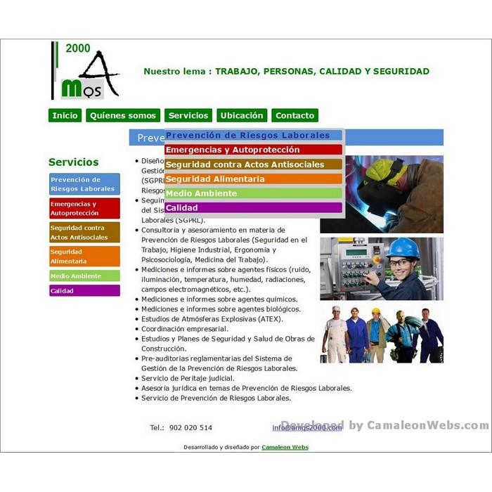 Pàgina servicios: amqs2000-com - projecte web de Camaleon Webs