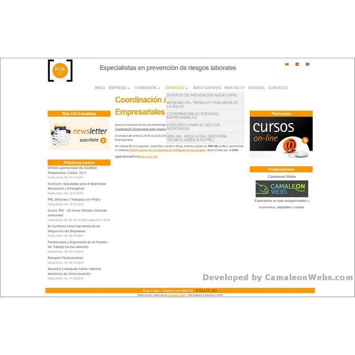 Pàgina servicios: risk21-com - projecte web de Camaleon Webs