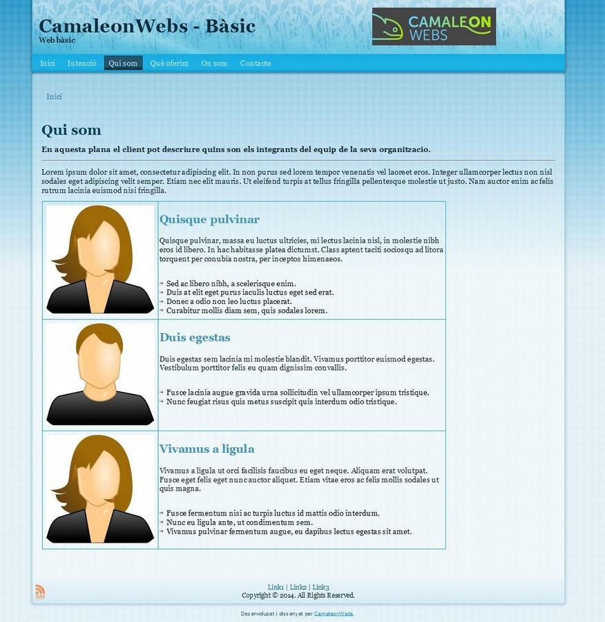 Soluciones web con plantillas, Drupal   Camaleon Webs