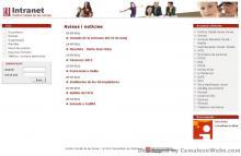 Pàgina inici: icd - projecte web de Camaleon Webs